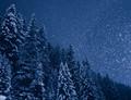 Snowfall in the night