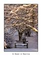 A Seat in Narnia