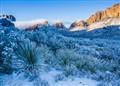 snowstorm in the desert