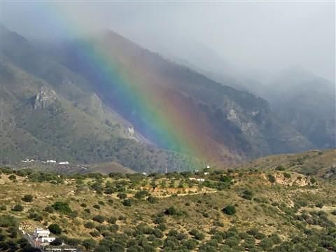 Rainbow_744