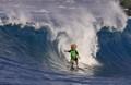 surferbaby