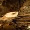 Cave 4