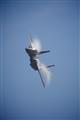 Vapor Eagle