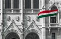 Parliament&National Flag,Budapest_small