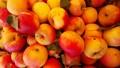 Apples at the Farmer's Market.
