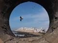 Essaouira in a circle