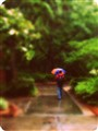 gatorumbrella