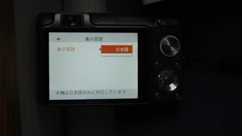 Sony W300