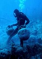 Diver with amphora