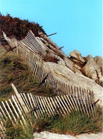 morse beach