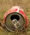 Waste beverage can