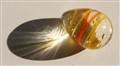 glassy egg