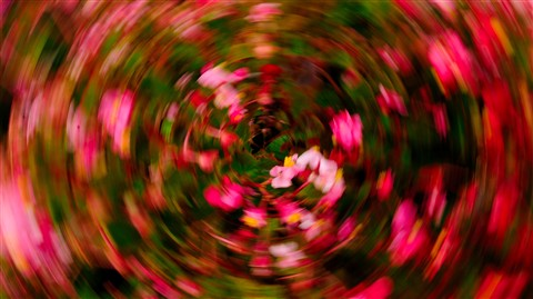blur_2