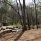 P4071153 - Reedy River falls park