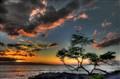 wailiea Maui