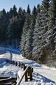 Winter in Czarnow