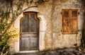 Door and vine