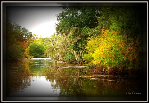 autumn on the bayou