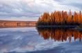 Flåsjøen