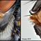 Fly closeup 044146