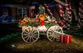 TX Christmas 2012