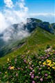 View from Mount Pilatus