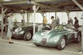 Classic Jaguars