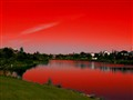 Alien_Landscape