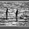 Waterwalkers