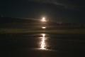 Luna Nocturna