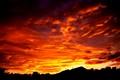 the dawn..