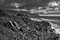 Hawaii Coastline B&W