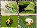Four Biomimicry Stamps