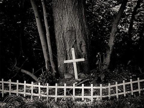 cross_sm