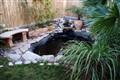 Pond 1#