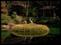 Gibb's Garden Zen