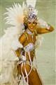 Samba beauty