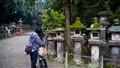 Nara lovers