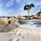 rice pebble beach Tasmania