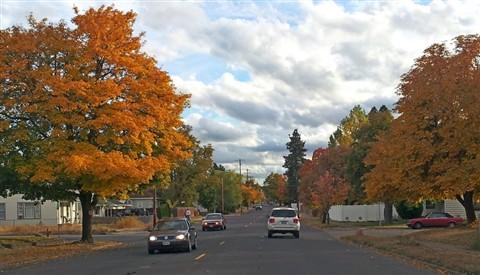 autumn_streets_4