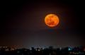 LA at Night-7399
