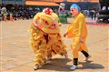 CHINESE NEW YEAR CELEBRATION LION DANCE