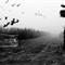 Haunted Laneway