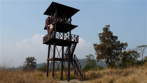 Watch Tower in Rajaji National Park, Dehradun, India
