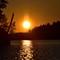 Sunset and Pollen Coronas
