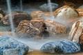 Rocks in a Fountain