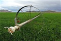 Winchester Irrigation