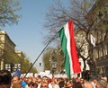 A Hungarian Flag during a Demonstration