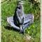 Grey Heron Basking in the Sun