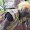 Tribal Worker